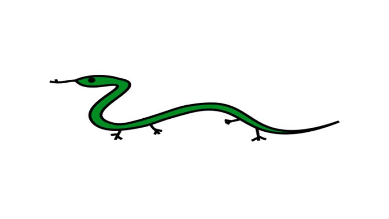 画蛇添足简笔画 画蛇添足简笔画怎么画